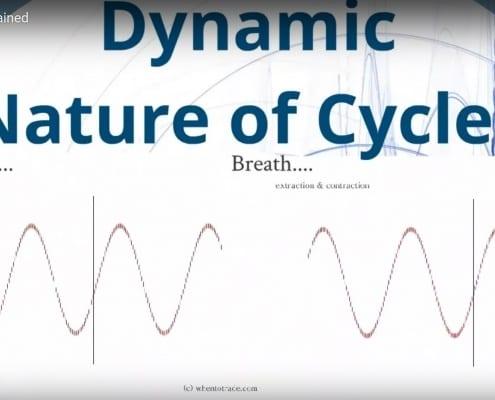 Dynamic Cycles
